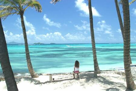 Palm Island Villa in the Grenadines - Grenadines