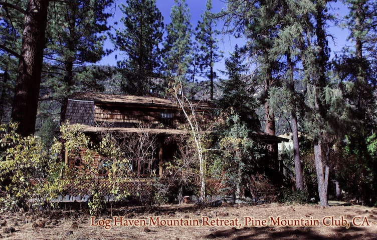 Beautiful Mountain Log Cabin  - Pine Mountain Club