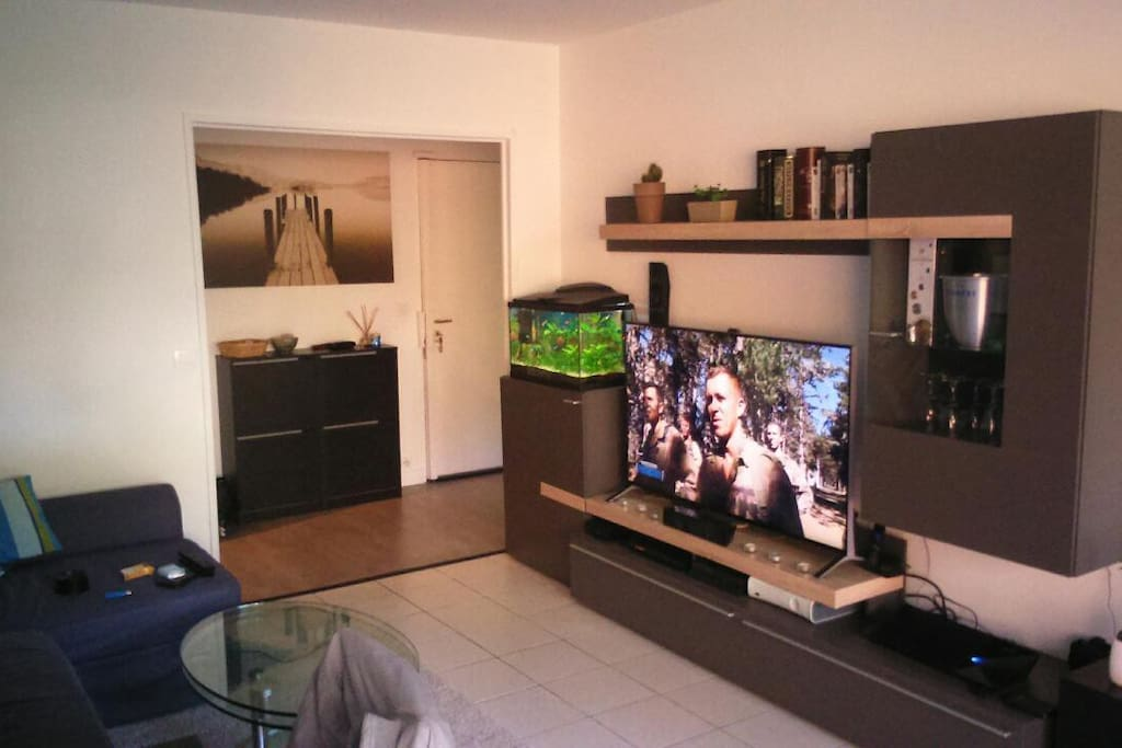 Séjour TV