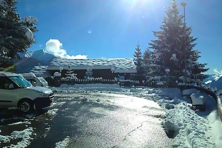 CHALET MONT BLANC - Chatel - Alpehytte