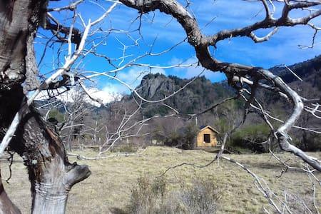 Cabaña un ambiente en Malalcahuello