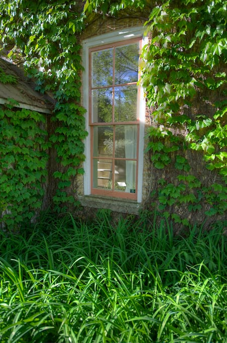 Spring Growth, large windows