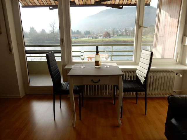 Nice flat with view over river Rhein - Küssaberg-Rheinheim - Apartemen