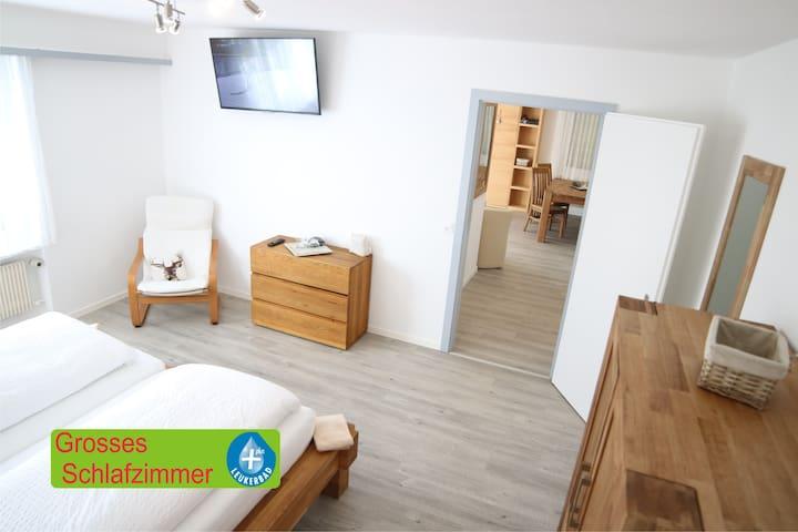 Haus Annelise Wohnung 3 - Leukerbad - Mobilyalı daire