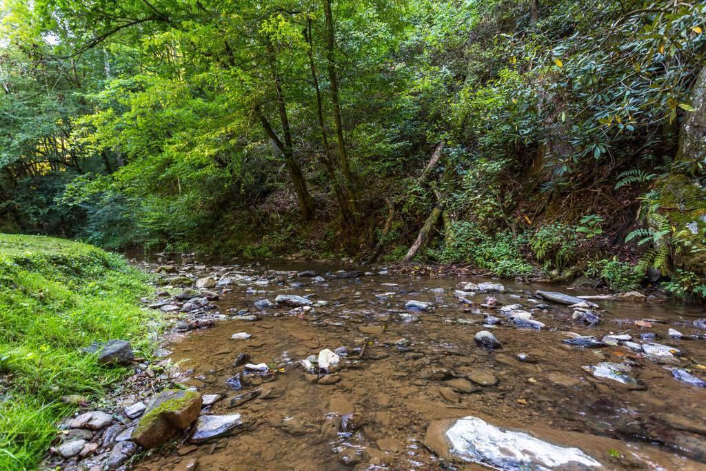 Fantastic flowing creek sitting directly under cabin.