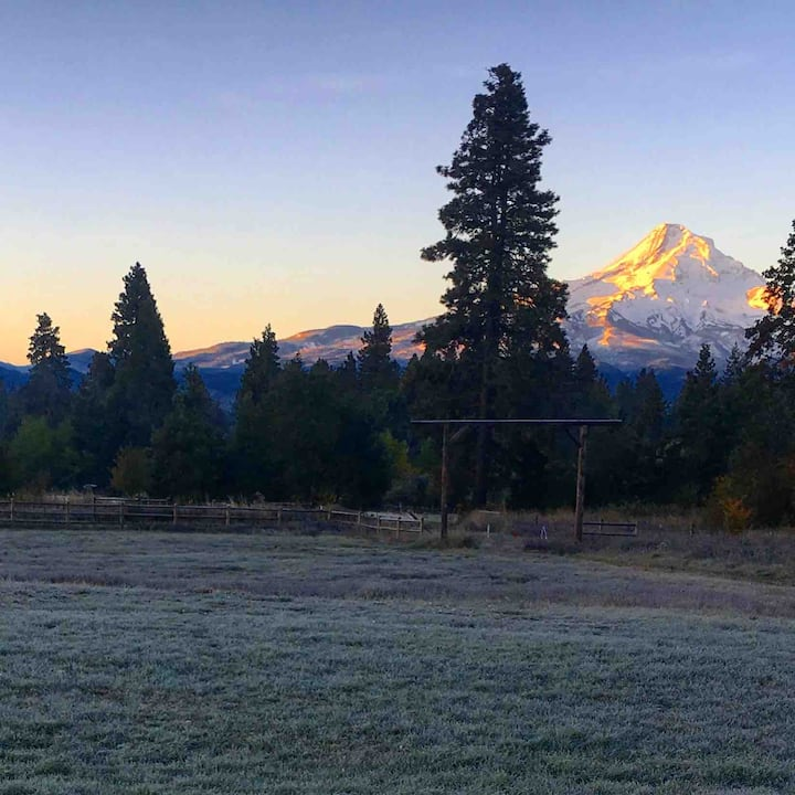 Amazing Mount Hood View at Alpine Acres Llama Farm