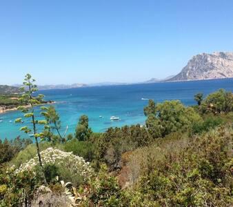 CASA PANORAMICA SUL MARE | Area marina protetta - Capo Coda Cavallo