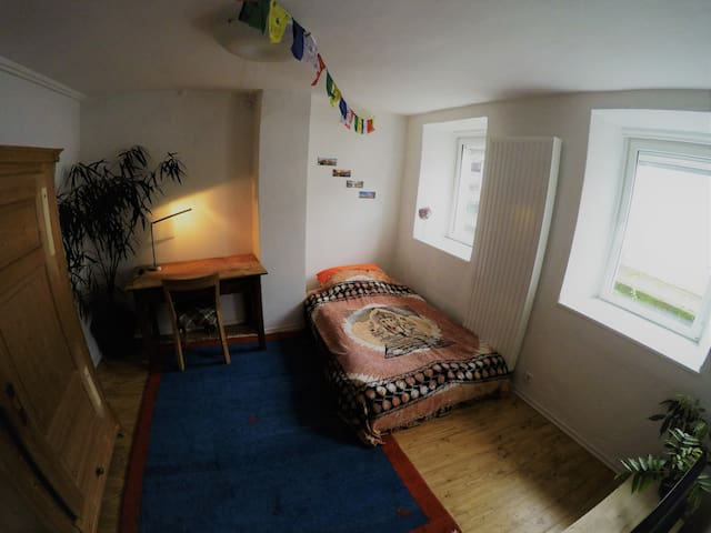 Gemütliches Zimmer im idyllischen Trier-Pallien.