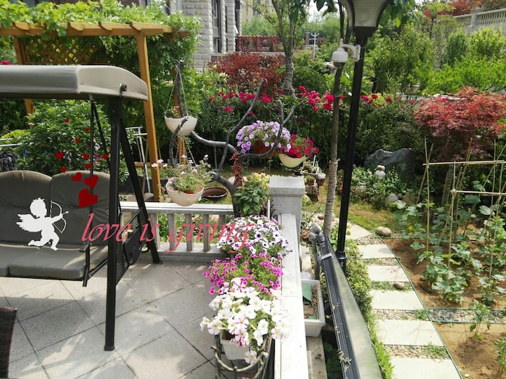 NINI的花园 ——近世博园, 李村河,海大崂山校区(樱花季),石老人,李村万达、绿城、乐客城