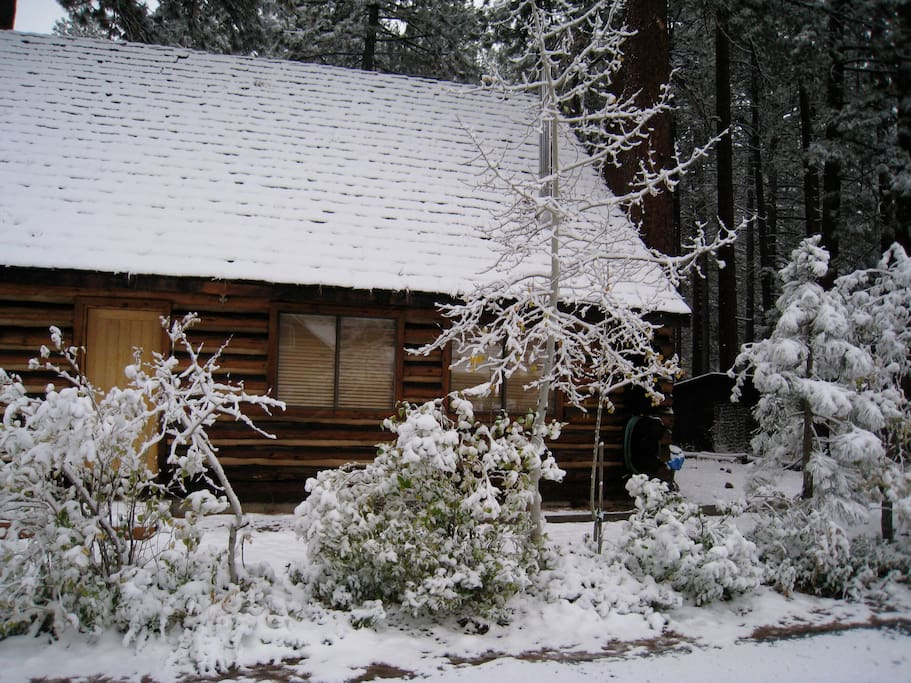 winter at the log cabin