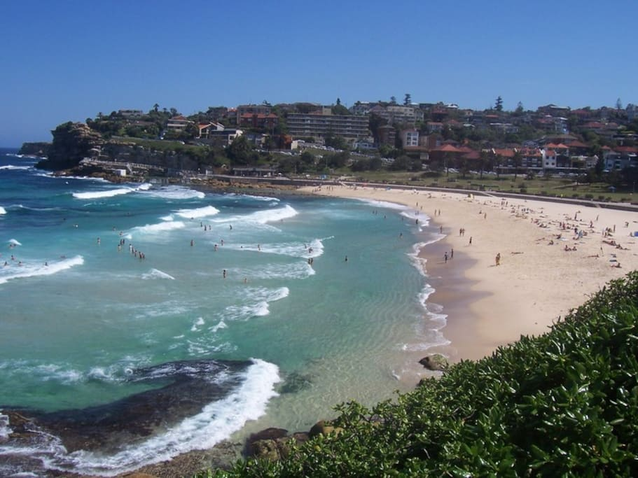 Summer Beach Room Apartments For Rent In Bronte New South Wales Australia