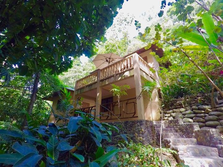 Colibri Lodge - Pico Bonito National Park