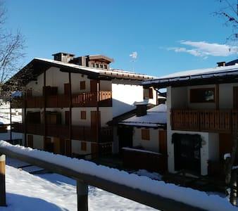 Ski slopes 50 meters !!!! - Folgarida - Wohnung