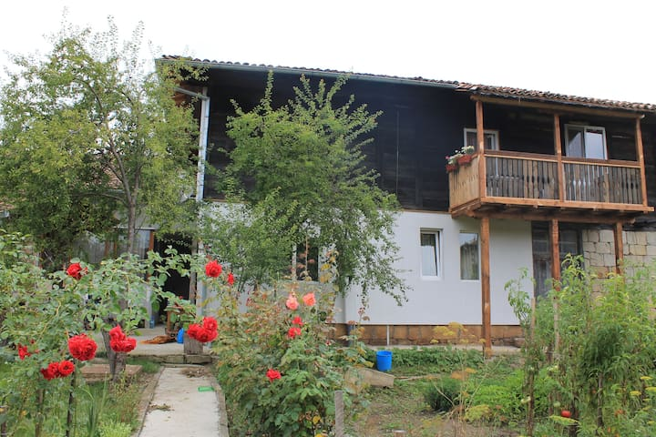 Palitsi Art House B&B (Elena)