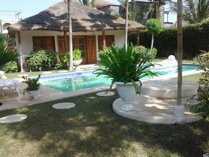 """jardin d'Afrique , """"le cocotier """""""