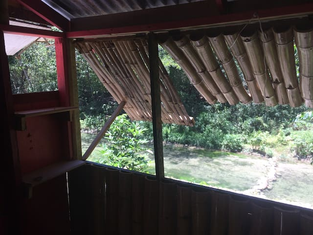 Bamboo Room By the River