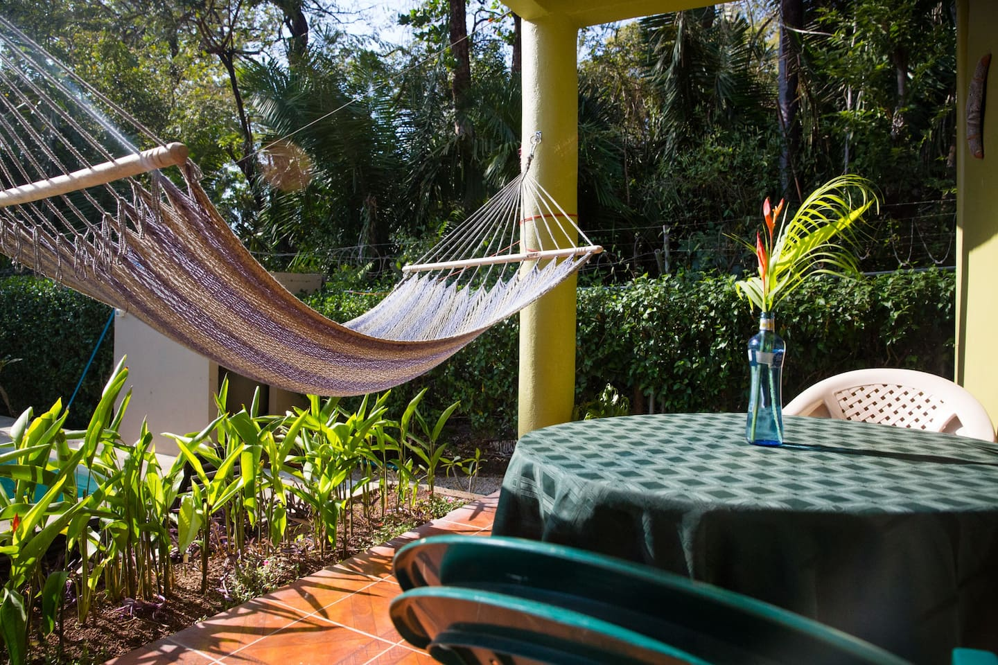 casa aloha on calle los mangos houses for rent in playa guiones