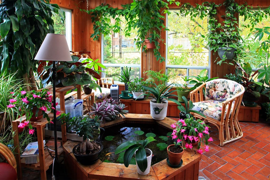 Beautiful sun room with Koi fish pond.