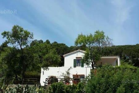 Casa Conchiglia - Capoliveri