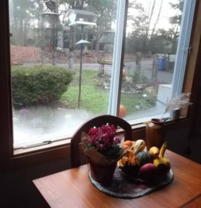 view to the front garden from the dining table.