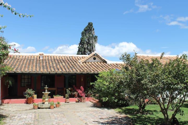Buganvilla- Centro Histórico