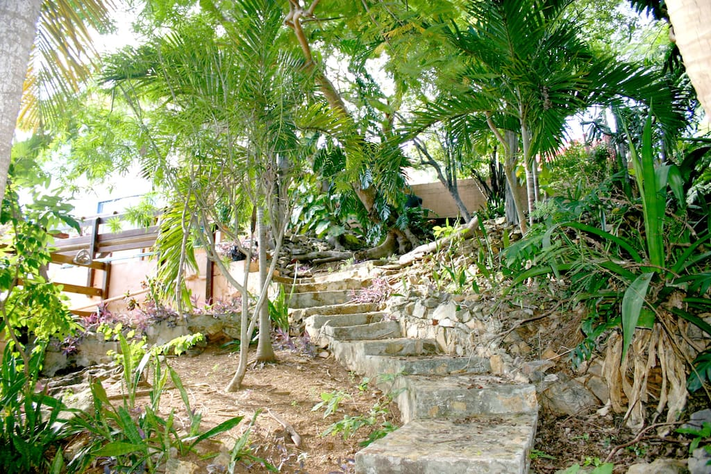 Stone walkway in the surrounding garden leading to the bungalow.