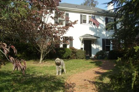 Walk to UVA Football & Campus from Guestroom Twins - Charlottesville - Bed & Breakfast