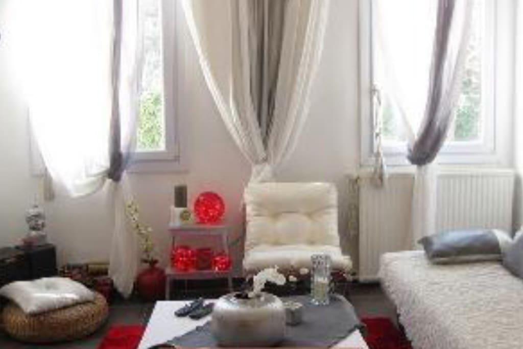 Grand salon très agréable et confortable très lumineux avec vu sur jardin