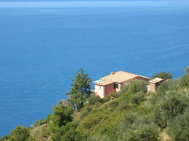 Poggio del Salice: apt Montaretto - Bonassola - Apartment