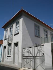 Casa en Murtosa en Ria de Aveiro - Huis