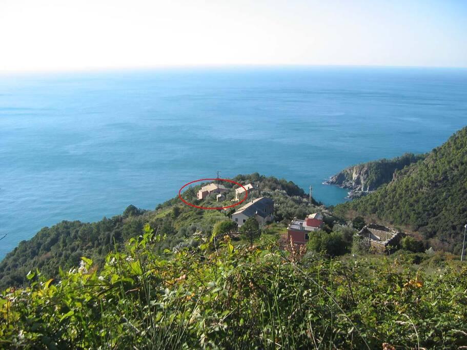 Questo è Il Salice visto dall'alto, quattro case sparse tra bosco e vigneti a picco sul mare. La nostra è quella nel cerchio rosso