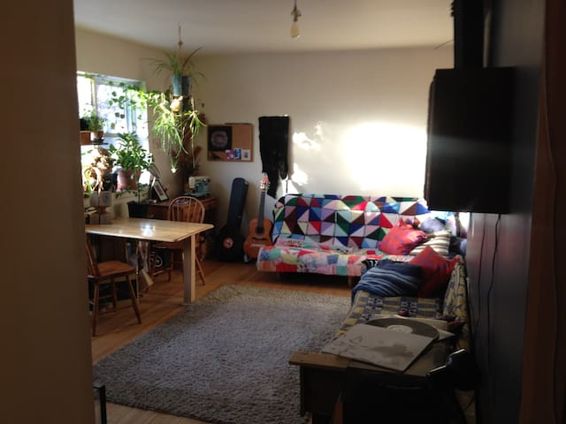 Sunny Plant-filled Home Near River - Winnipeg - Appartement