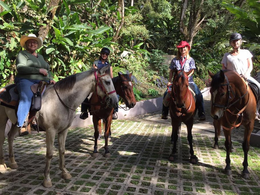 Boquete is horse country, and so is our property!