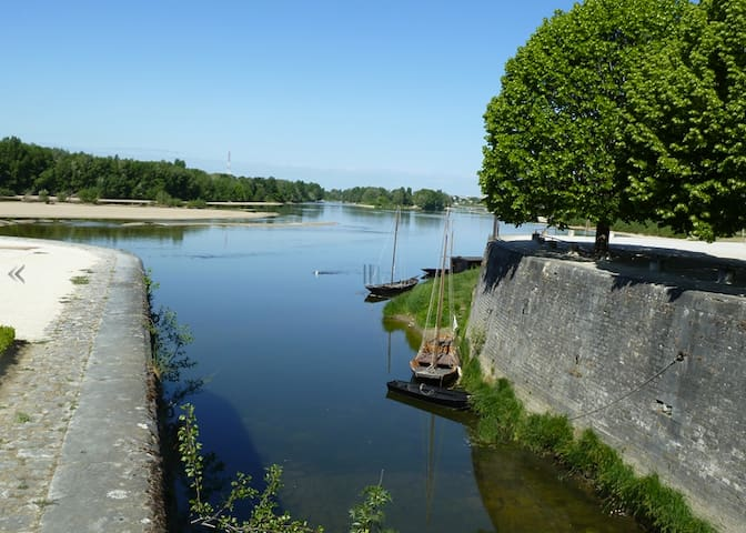Nice flat close to the Loire river  - Combleux - Wohnung