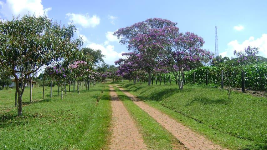 Fazenda dos Manacás - Bragança Paulista - Blockhütte