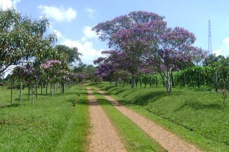 Fazenda dos Manacás - Bragança Paulista