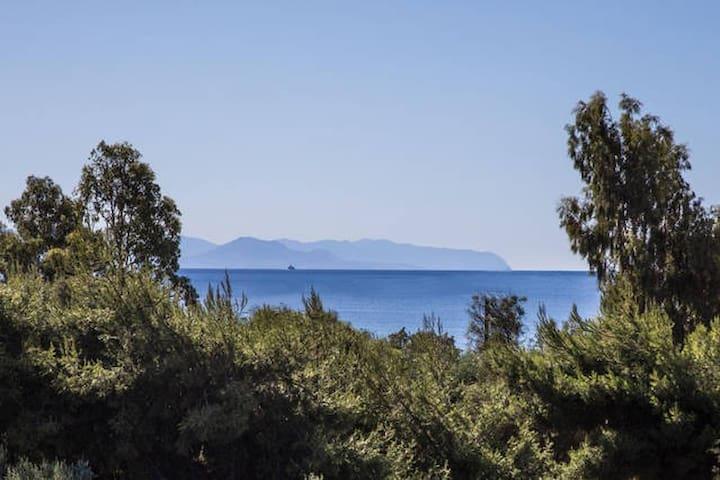 cozy sea view studio flat - Lakonia - Apartment