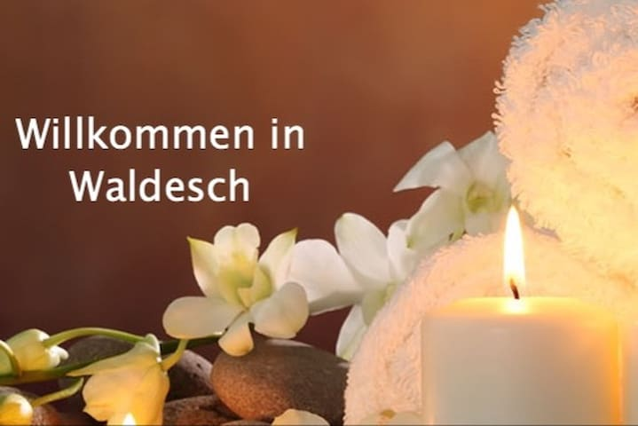 Ihr allinklusiv Apartment für Zwei in Waldesch - Waldesch - Apartment
