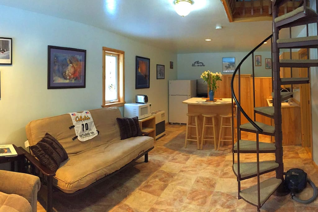 Downstairs living area has futon for extra guests.