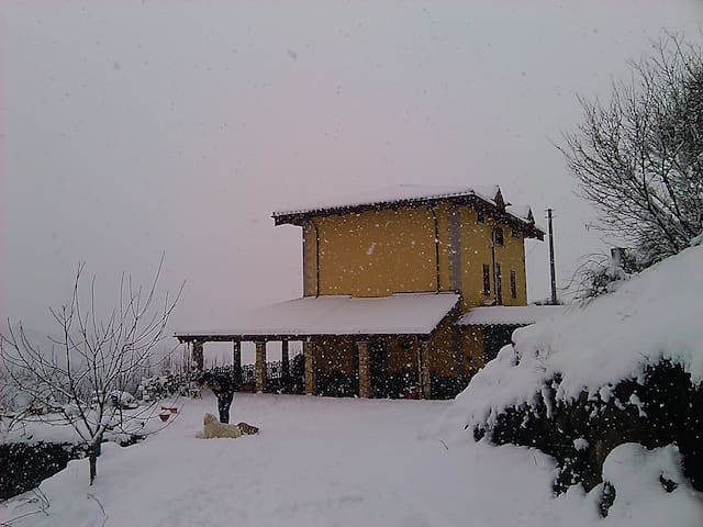 Vacanze di Natale in un vero BB - Mormanno - Bed & Breakfast