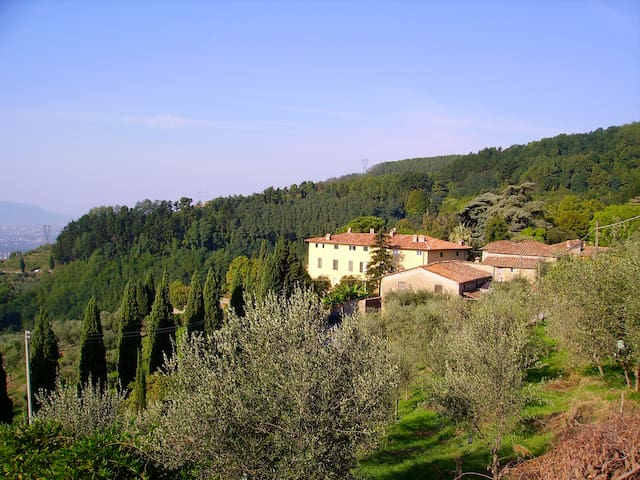 Fattoria di Petrognano, your B&B room 3
