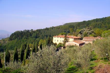 Fattoria di Petrognano, your B&B  - Capannori, Lucca