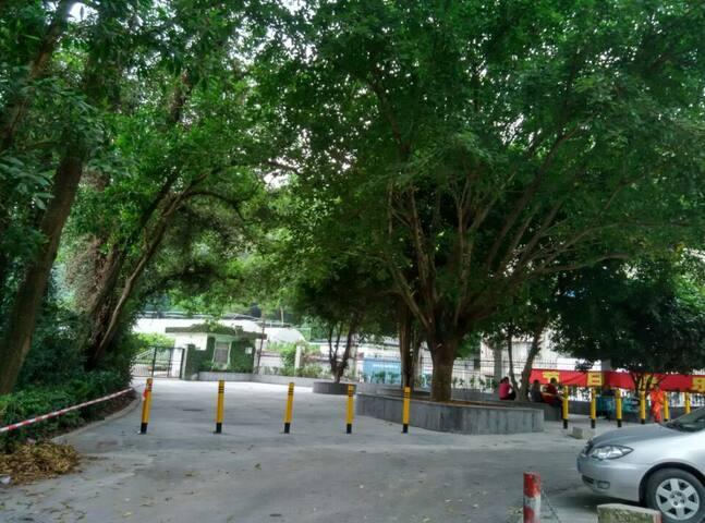 绿色之屋 Green House - Shenzhen - Condominium