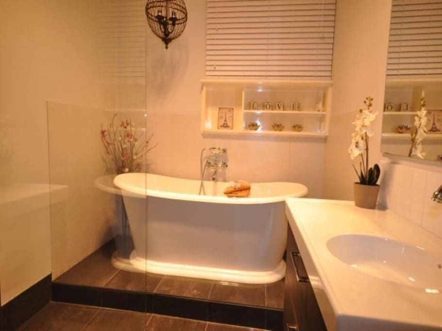Luxurious guest bathroom with shower and bath tub