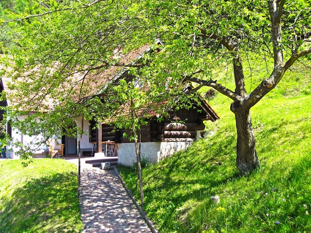Romantic chalet in the countryside - Dobrova-Polhov Gradec - Dağ Evi
