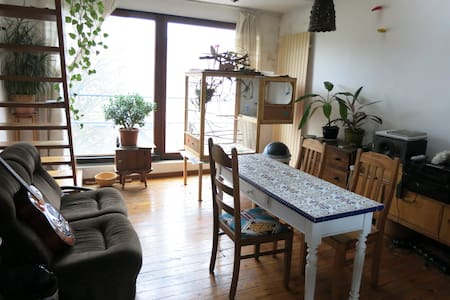 cosy apartment forest/st-gilles