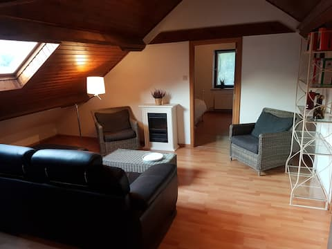 Lovely penthouse near the city center of La Roche