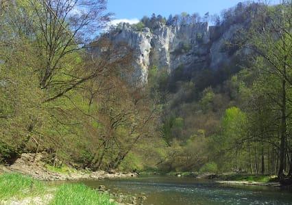 Auf dem Weg im Donautal.. - Beuron