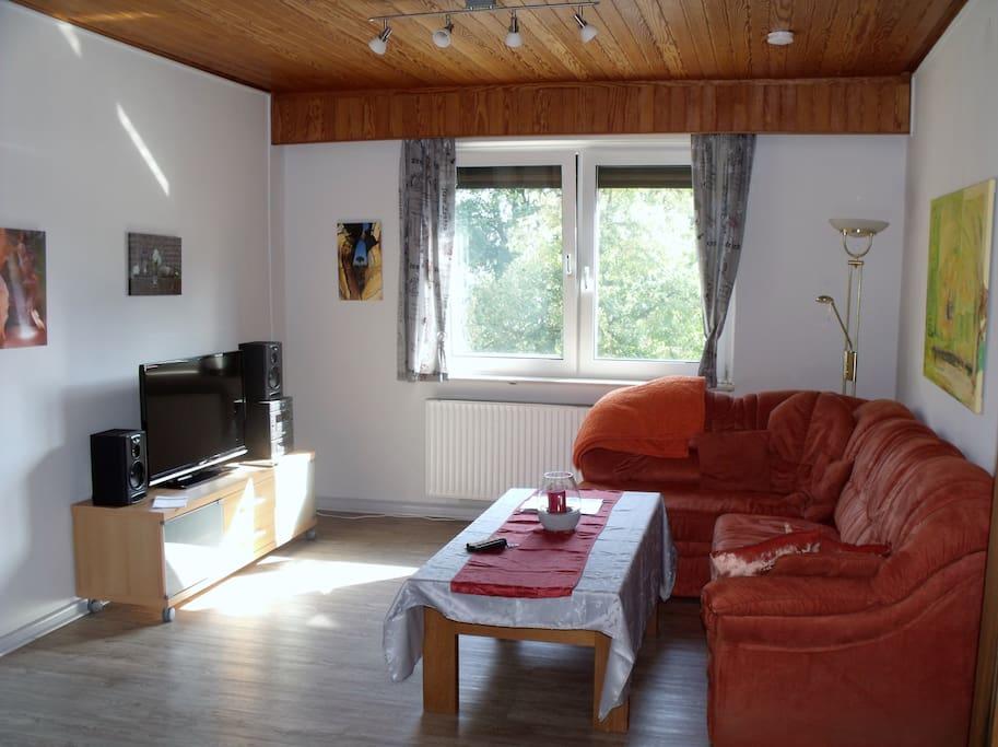 Wohnraum mit Schlafcouch und TV Anlage