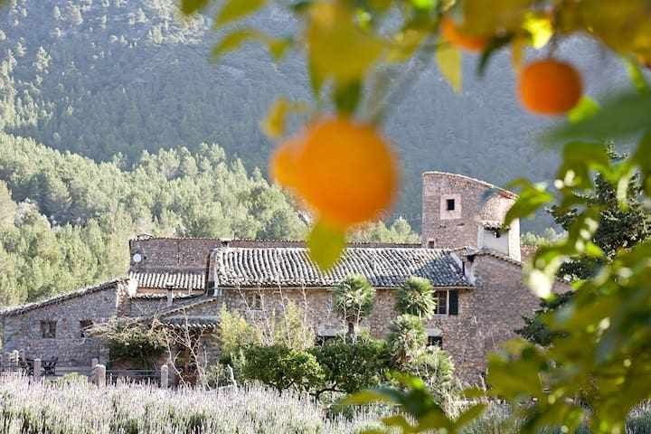 RENT A WHOLE AGROTOURISM AT SÓLLER FOR 27 PEOPLE